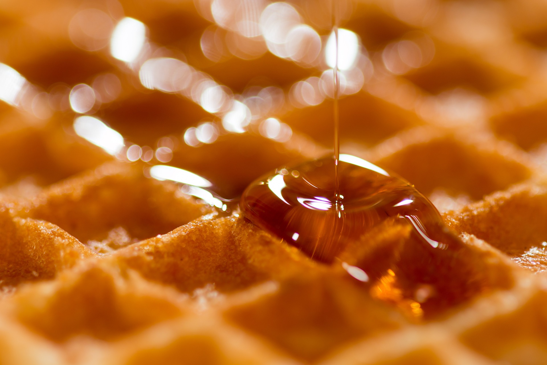 belgica -waffle-